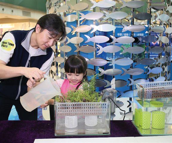 商場舉辦工作坊,讓大家跟鄒生學藝,學砌日系微縮水草園林造景。