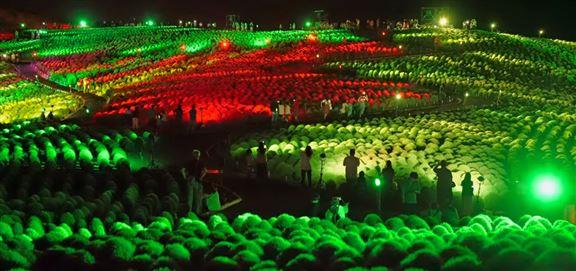 8月23日至9月1日,園方舉辦夜間點燈活動,彩燈為掃帚球添上動人色彩。