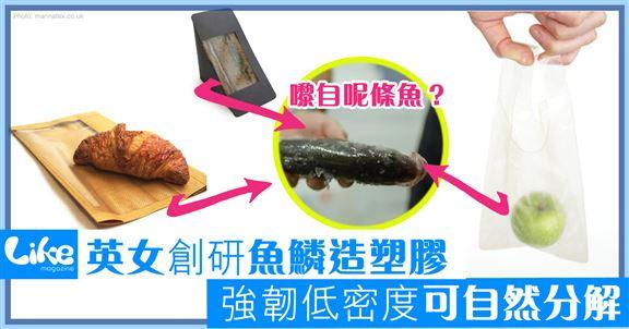 英女創研魚鱗造塑膠       強韌低密度可自然分解