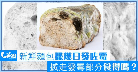 新鮮麵包擺幾日發咗霉                              揻走發霉部分食唔得食?