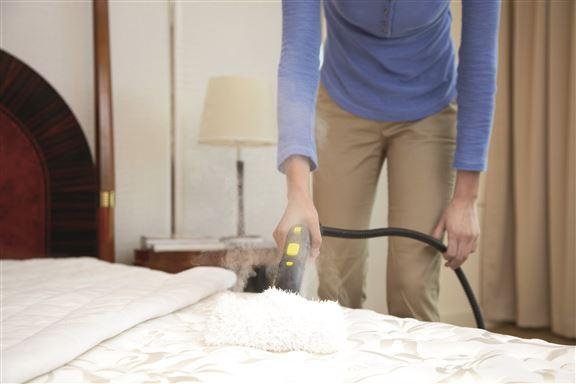 塵瞞是誘發鼻敏感和哮喘的元凶之一。定期用高溫清潔床褥,把致敏的塵瞞殺掉。