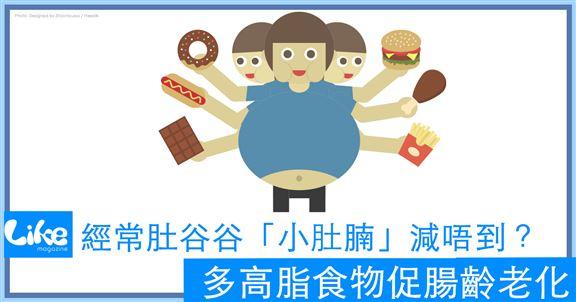 經常肚谷谷「小肚腩」減唔到?多高脂食物促腸齡老化