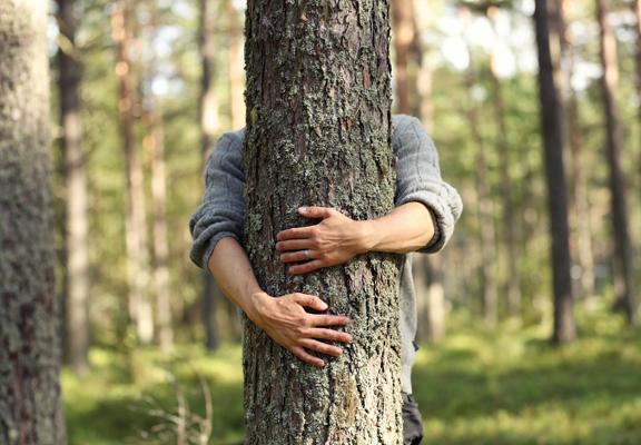 芬蘭以其純淨的大自然而聞名,當地人貼近自然的生活,令他們獲得心靈平靜。