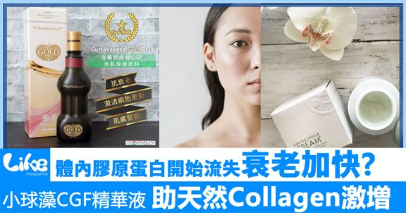 【 Sun Wakasa Gold Plus®真.美肌】助天然Collagen激増,保持年輕肌膚!