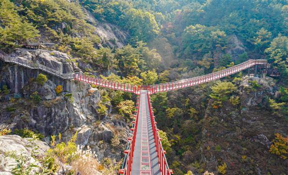 韓國慶尚南道全新Y形吊橋│體驗懸浮山谷嘅刺激感