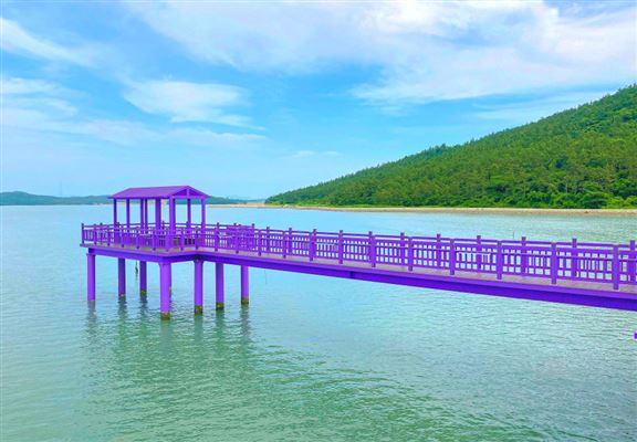 連接朴只島和半月島嘅橋樑進行翻新後油上紫色,紫色橋夠特別,瞬即成為韓國打卡熱點。