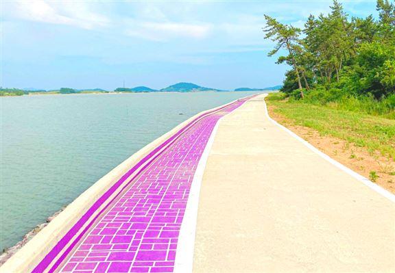 既被美名為紫色島,連海邊嘅步道都係紫色!