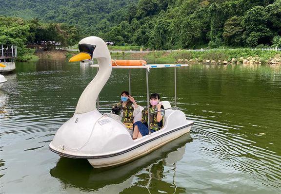天鵝湖觀光船遊湖