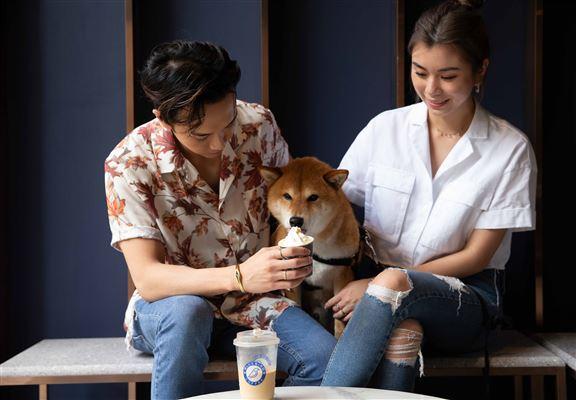 狗主人可向櫃枱員工免費領取1杯Puppychino,與狗狗共享咖啡時光。