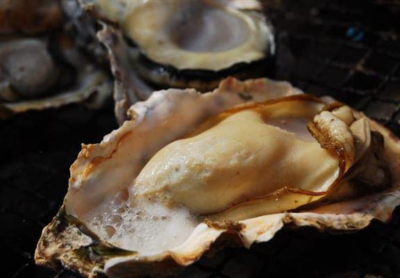 住之江牡蠣產量不多,味道濃郁,口感更實在。