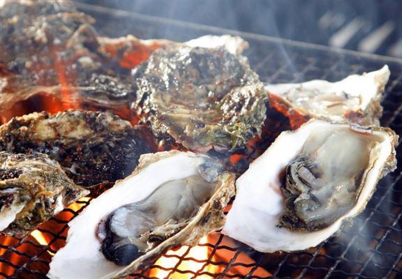廣島灣水靜,同時有適度嘅潮水流動,加上附近山地為海域帶來豐富營養,所以廣島蠔以肉厚、海水味重而聞名。