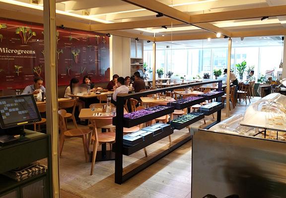 野玩田店主打都市健康田園風,店內闢出空間種植「微菜苗」,即摘即煮成健康美味菜式。